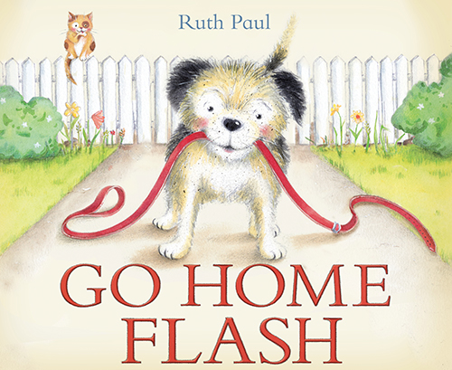 Go Home Flash by Ruth Paul {Plus Giveaway}